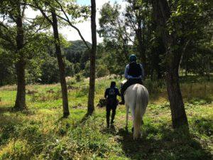 山之村牧場の引き馬体験は豊かな自然が魅力的です